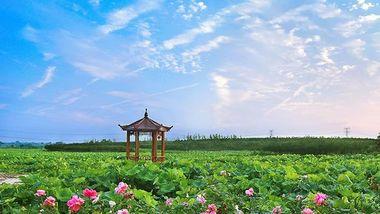 【新洲区】武汉紫薇都市田园门票(双人票)-美团