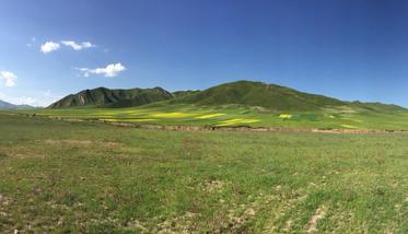 【兰州出发】桑科草原、拉卜楞寺2日跟团游*汉藏合璧,游牧时光-美团