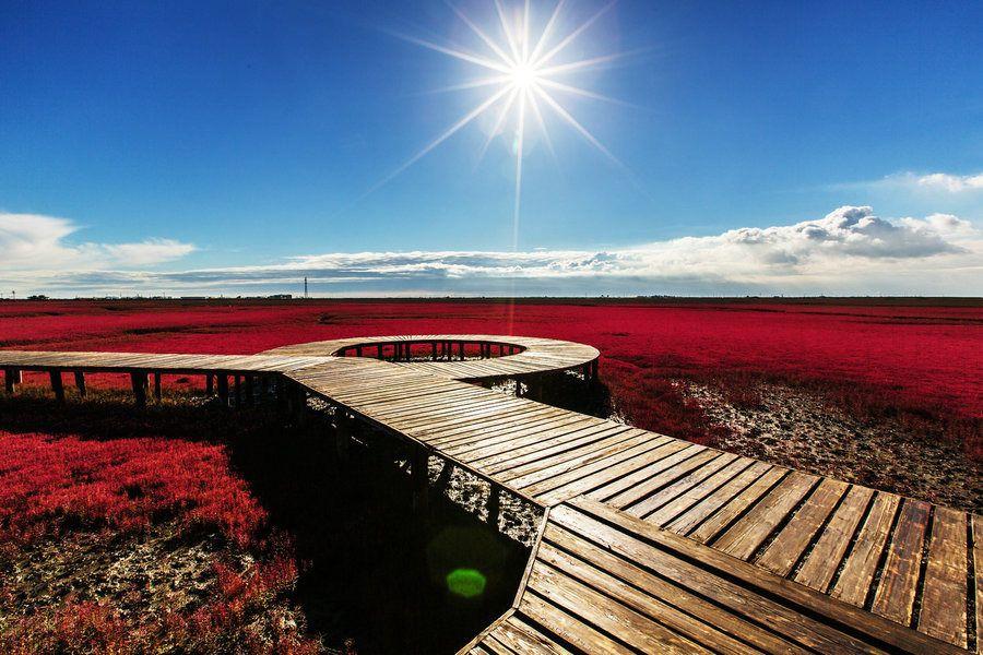 红海滩廊道风景区,鼎翔生态旅游区纯玩2日跟团游4星级酒店*纯玩畅游红