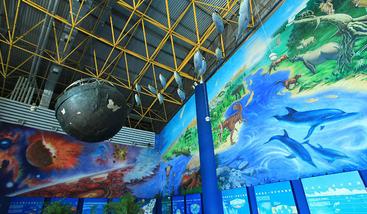 【北京出发】北京动物园、北京海洋馆纯玩1日跟团游*自由出行,亲子踏青。-美团