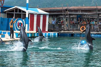 【三亚出发】分界洲岛纯玩1日跟团游*户外门票+接送+浮潜-美团