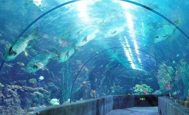 郑州海洋馆-美团