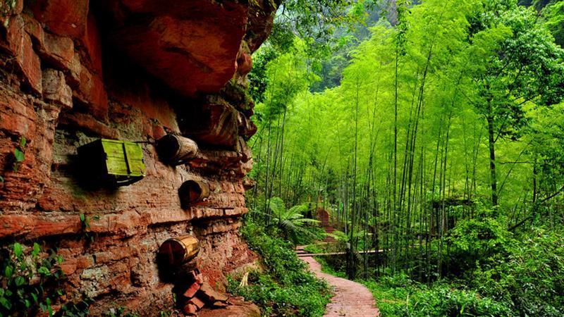 中国侏罗纪公园-美团