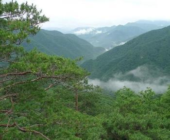 【长春出发】五女峰国家森林公园、鸭绿江观光漂流2日跟团游*塞外小江南集安2日游-美团