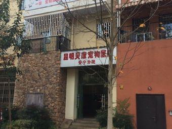 贝康宠物医院(安宁分院)