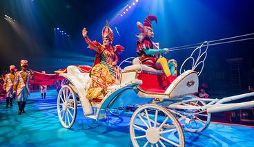 【其它】广州长隆国际大马戏门票+长隆飞鸟乐园套票(成人票)-美团