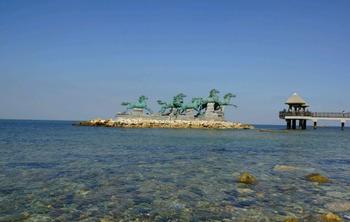 【烟台出发】养马岛1日跟团游*海边休闲戏水玩沙-美团