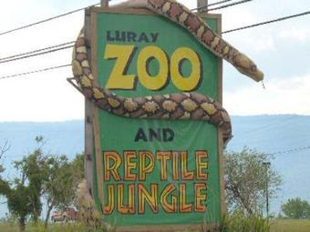 Luray Zoo - A Rescue Zoo