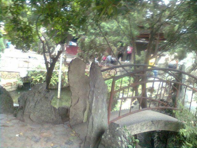 岱山岩自然森林风景区