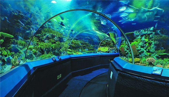 上海海洋水族馆-美团
