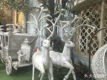 爱诺庄园大上海摄影基地