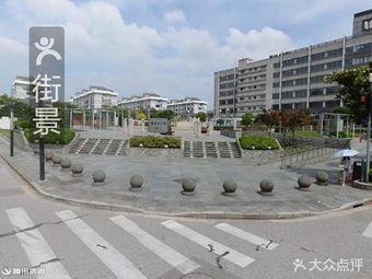 花木玉兰广场