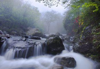 【信阳出发】西河景区纯玩1日跟团游*相约彩虹桥空中漫步-美团
