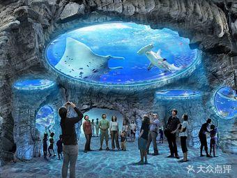 梦幻海洋乐园