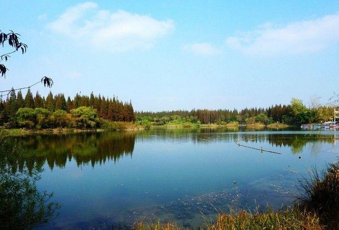 东平国家森林公园-美团