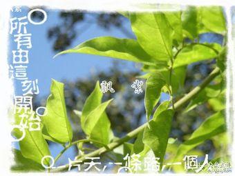 漕河泾开发区绿色生态休闲中心