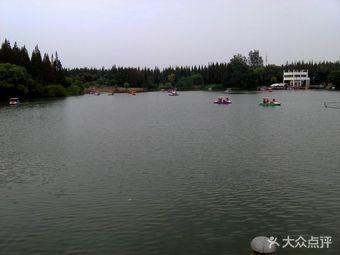 东平国家森林公园水上乐园