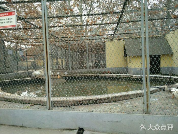 渭滨公园动物园图片 - 第19张