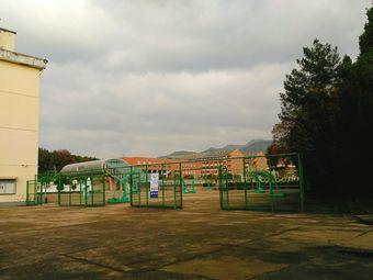 仙居中学体育馆