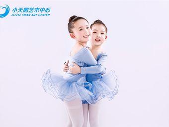 小天鹅艺术中心(力宝校区)