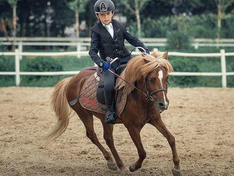 騎域馬術·Ipony騎士院