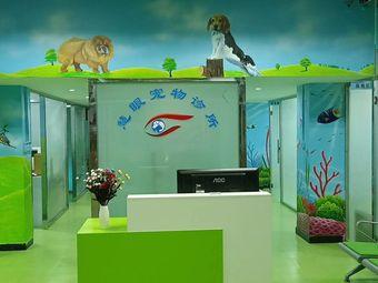 慧眼宠物诊所