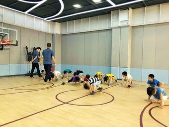 球球篮球训练营