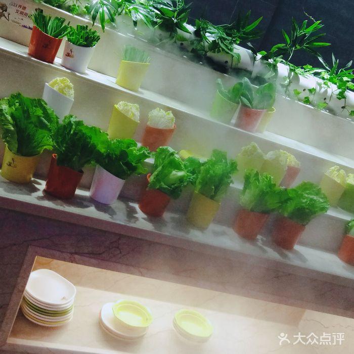 梦幻岛自助餐厅
