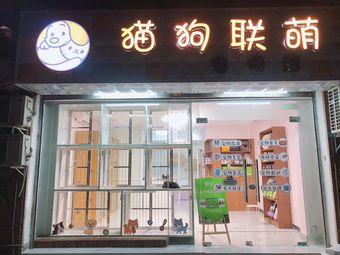 猫狗联萌宠物店