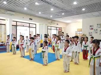 臻武国际跆拳道
