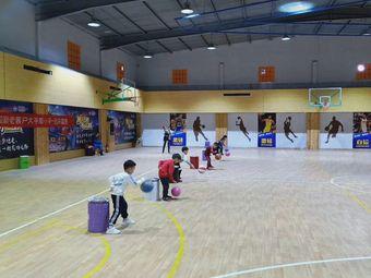 兴融儿童篮球培训