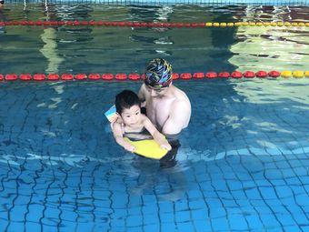 金海豚游泳俱乐部