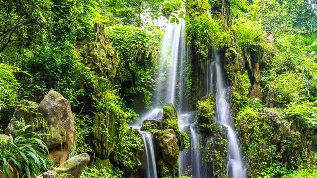 壁纸 风景 森林 桌面 640_360