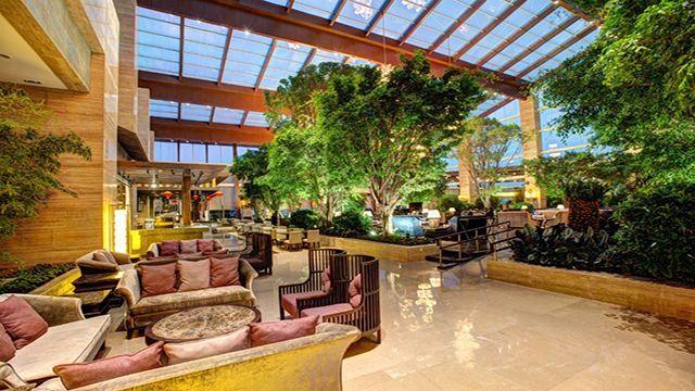 黑龙滩长岛天堂洲际酒店 景点介绍 黑龙滩棕榈泉温泉戏水游泳馆 黑龙