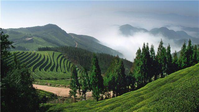 酒店图4 酒店图5 景点介绍 福泉山风景区 东钱湖福泉山景区位于东钱