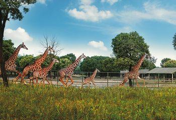 【上海等】速8酒店(上海野生动物园店)1晚+双人上海野生动物园门票+双早-美团
