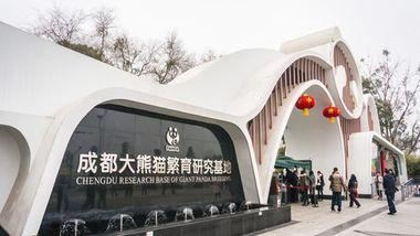 【成都等】成都中联上成酒店1晚+双早+双人成都大熊猫繁育研究基地门票-美团