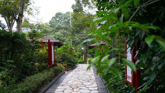 小坑国家森林公园位于广东省韶关市曲江区内,公园总面积1.
