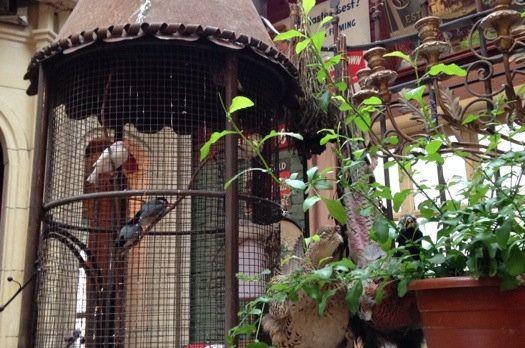 一个资深下午茶痴和她的十个逼格最高的隐世咖啡馆