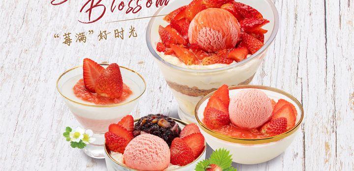 【青岛】甜品控必来 人气爆表的糖水铺