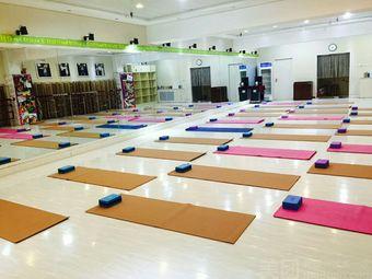 西门体育馆瑜伽