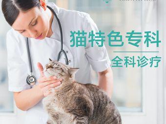 佩森宠物诊所·猫专科