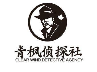 青枫侦探社