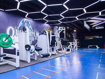 型动力健身私教会所