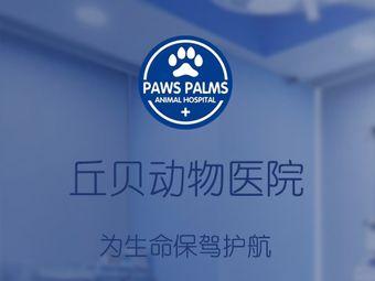 丘贝宠物医院·猫科犬科
