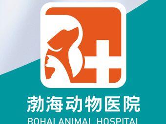 渤海动物医院