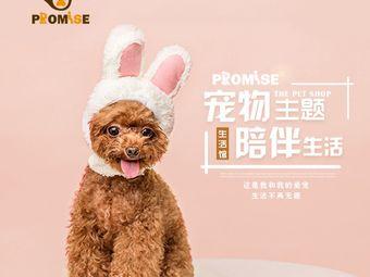 promise宠物主题生活馆