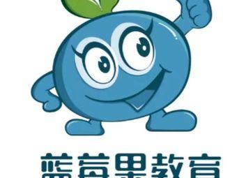 蓝莓果育优教育