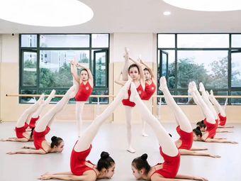 苏艺舞蹈艺术培训学校