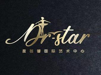 星芭蕾国际艺术中心